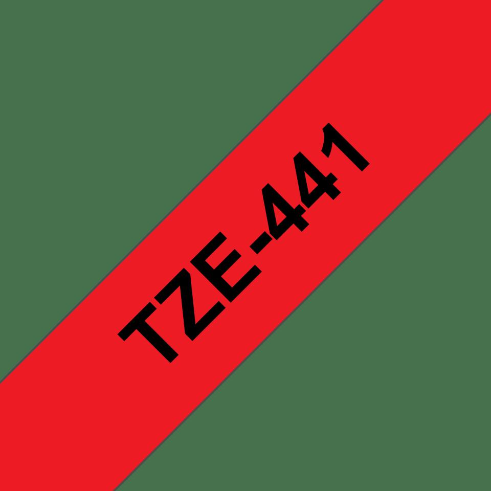 TZe441_main